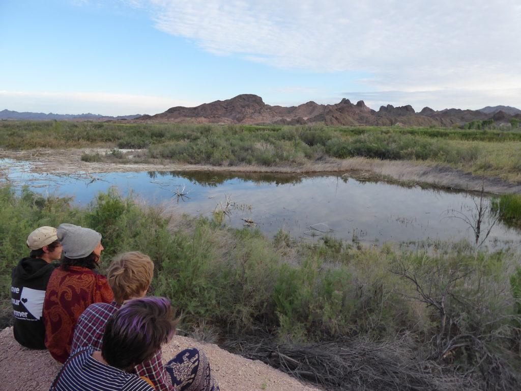 Gap Year: Bird Watching Colorado River