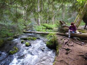 Gap Year: Marmot Pass Camping